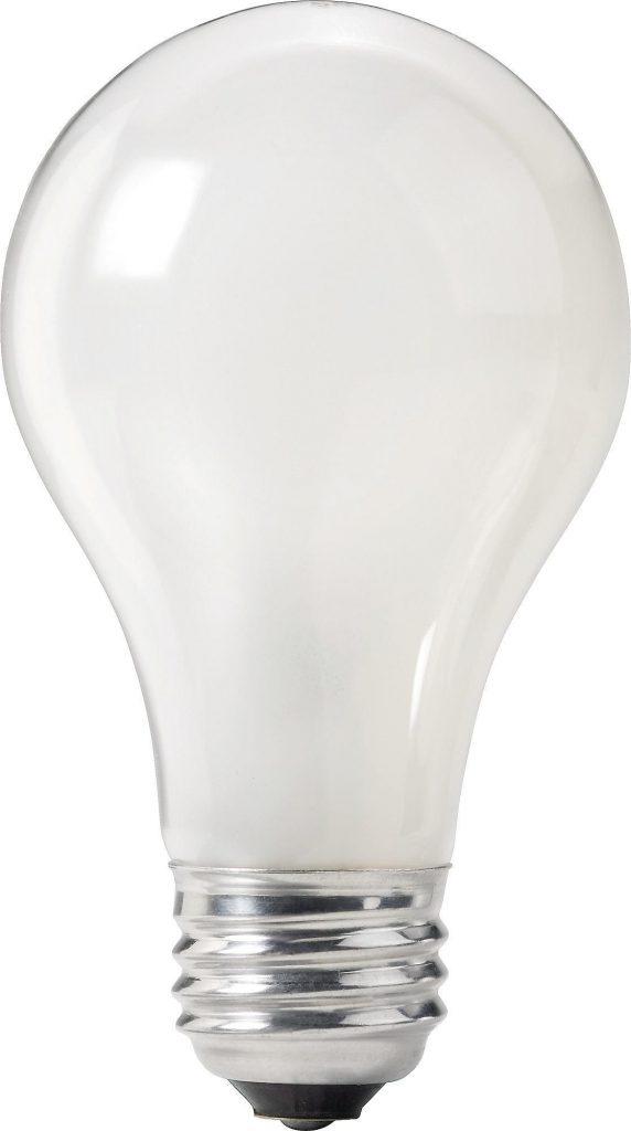 Corn Bulb